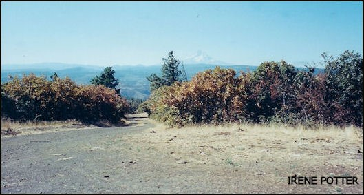 View of Mount Hood in distance 9/28/2003